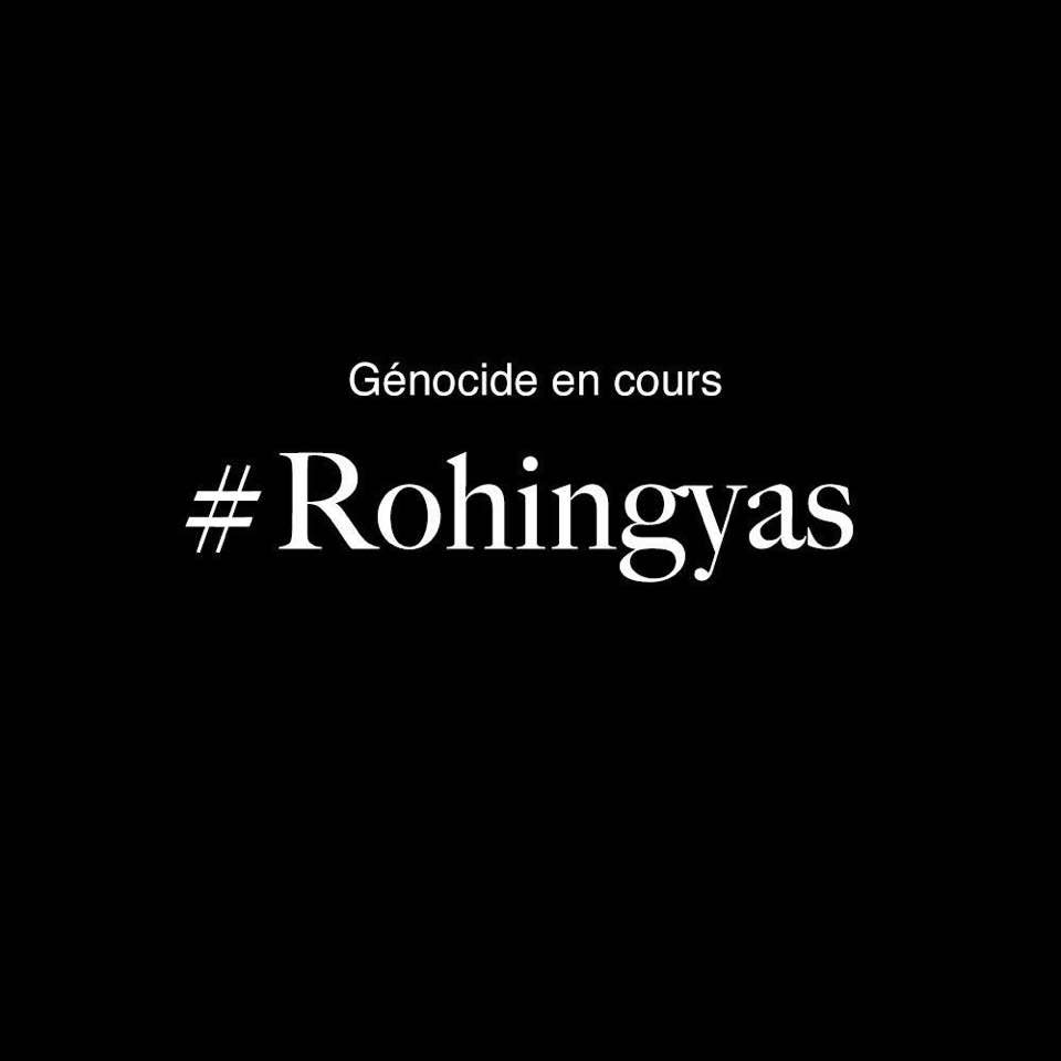 Intervention en séance plénière : Rohingyas de Birmanie, un défi pour la communauté internationale
